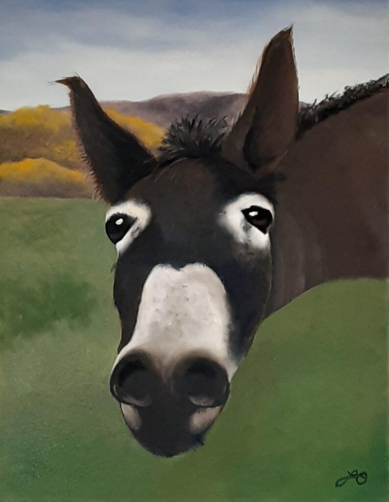 Artistic Escape Donkey