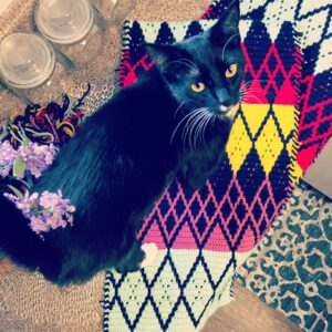 Crochet Société Materials