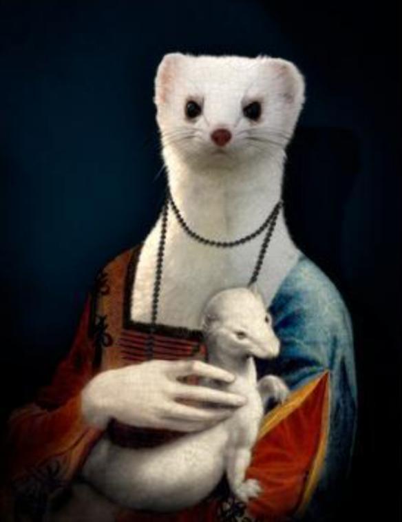 Pop Weasel 2